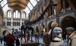 El museo pidió disculpas por semejante error