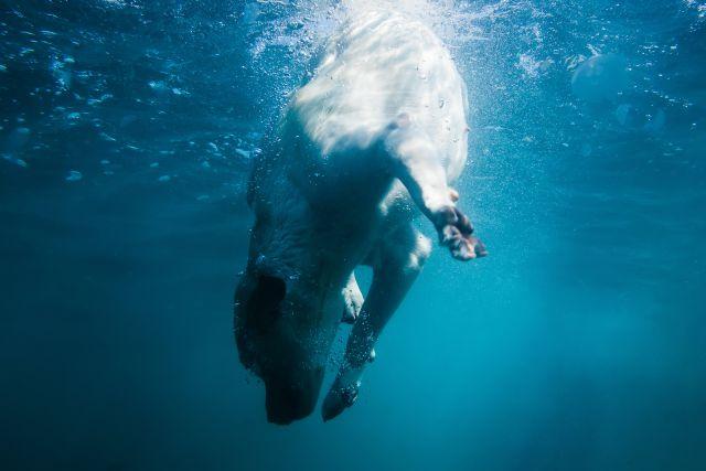 Consiguió respirar debajo del agua